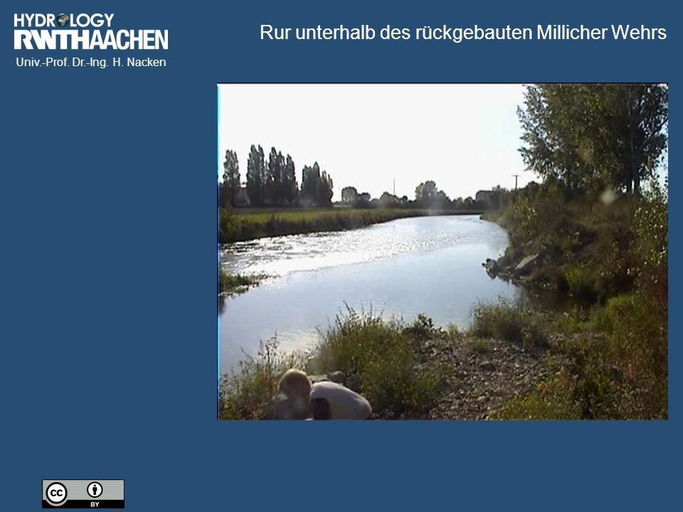 Univ.-Prof. Dr.-Ing. H. Nacken Rur unterhalb des rückgebauten Millicher Wehrs