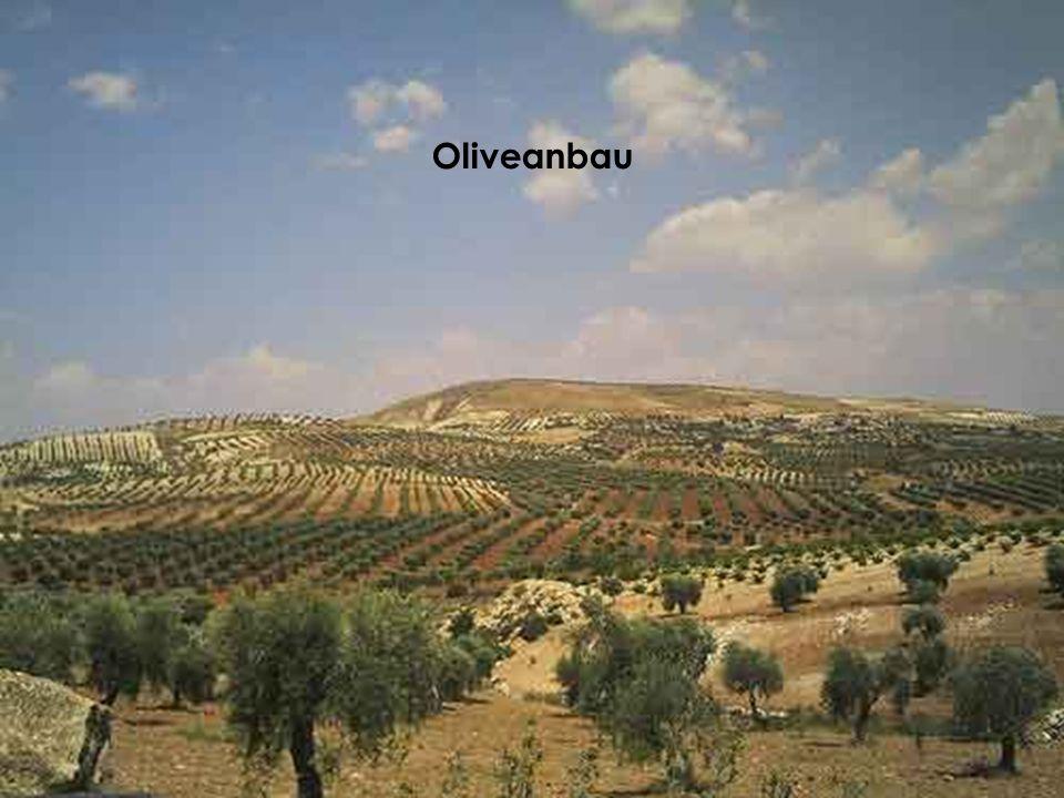 das ganz alte Damaskus