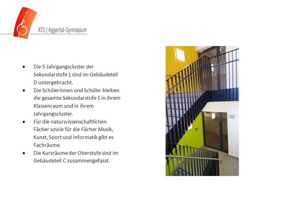  Die 5 Jahrgangscluster der Sekundarstufe 1 sind im Gebäudeteil D untergebracht.