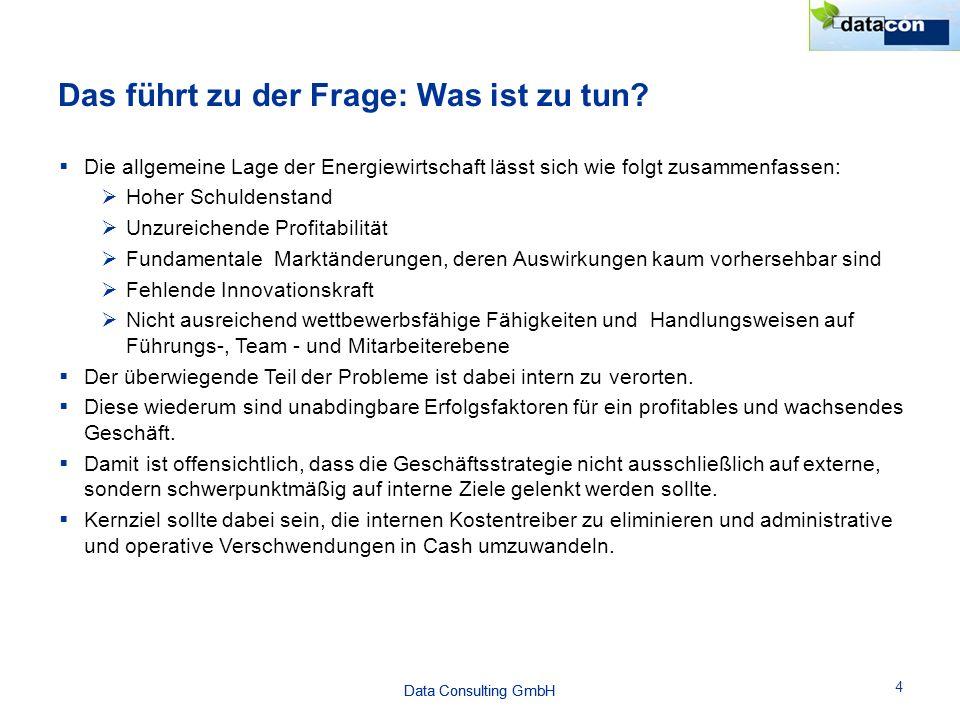 Data Consulting GmbH Das führt zu der Frage: Was ist zu tun? 4  Die allgemeine Lage der Energiewirtschaft lässt sich wie folgt zusammenfassen:  Hohe