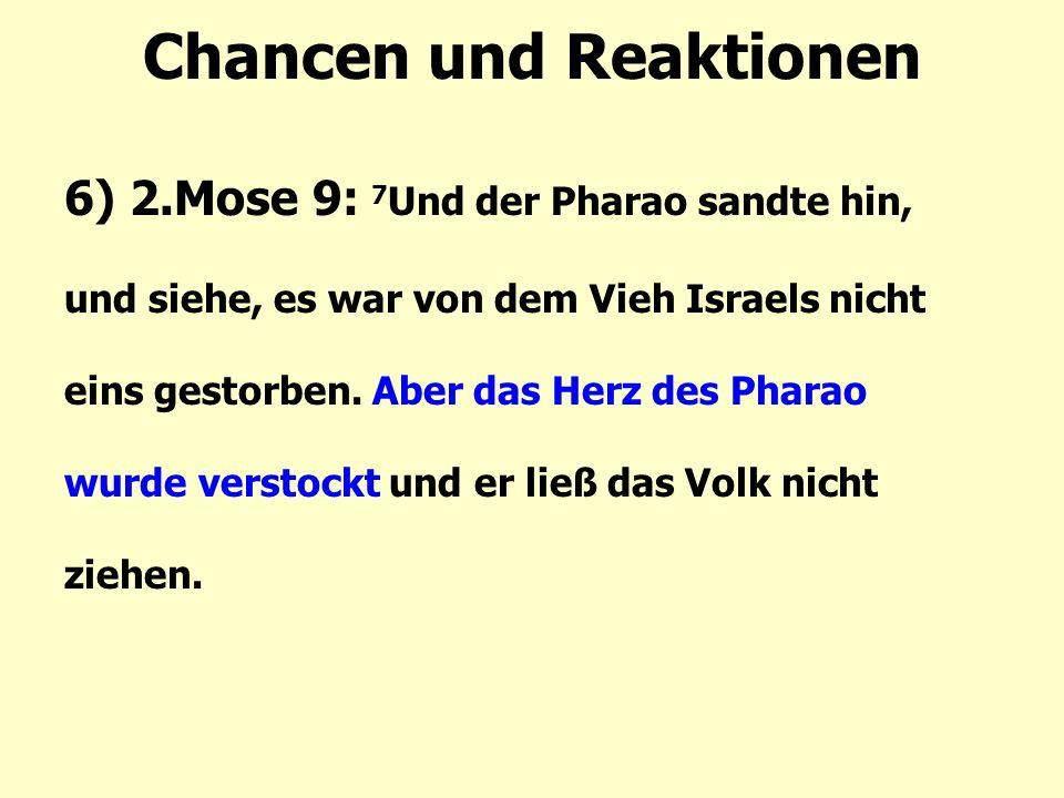 Chancen und Reaktionen 6) 2.Mose 9: 7 Und der Pharao sandte hin, und siehe, es war von dem Vieh Israels nicht eins gestorben.