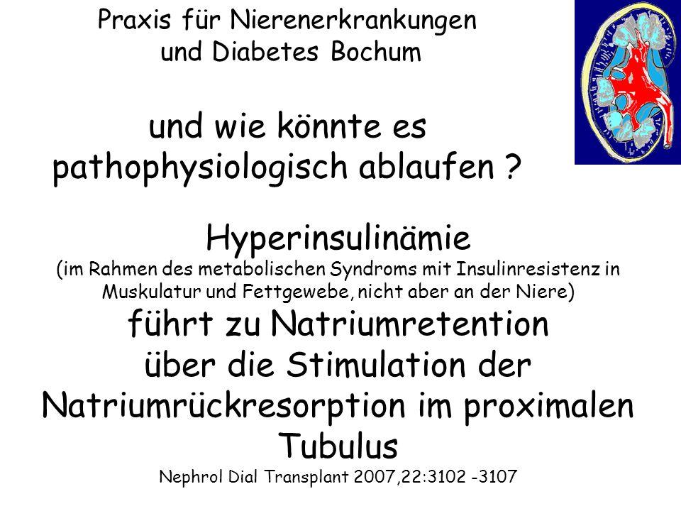 Praxis für Nierenerkrankungen und Diabetes Bochum Hyperinsulinämie (im Rahmen des metabolischen Syndroms mit Insulinresistenz in Muskulatur und Fettge