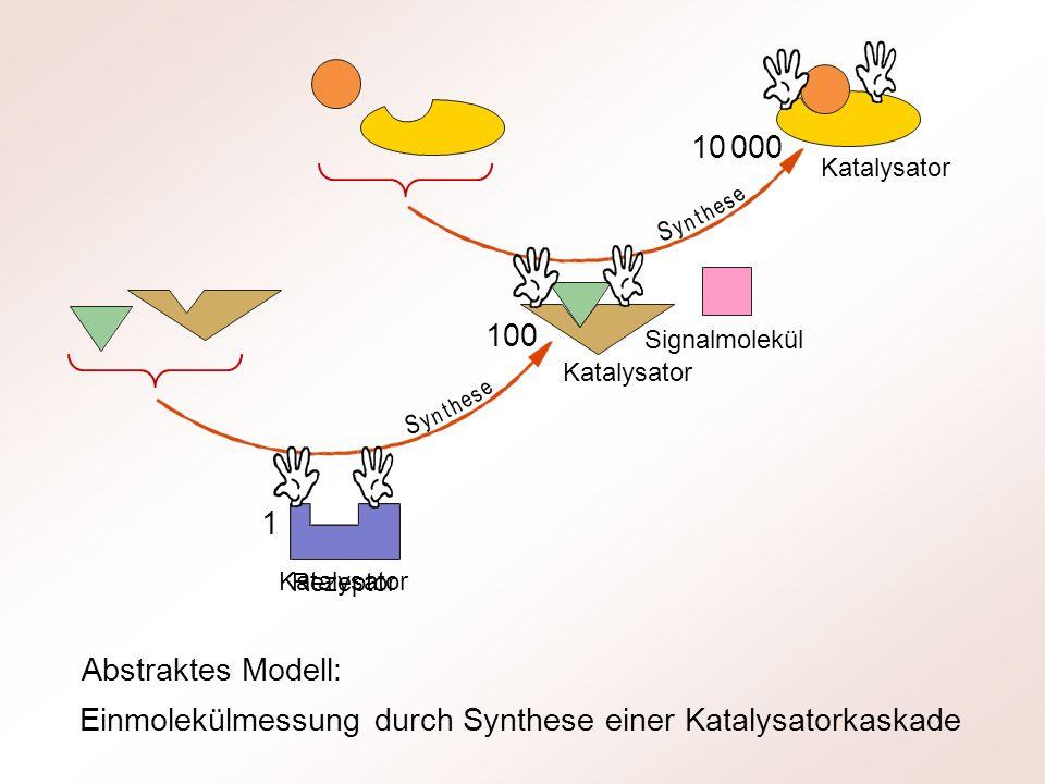 Einmolekülmessung durch Synthese einer Katalysatorkaskade Rezeptor Signalmolekül 100 10 000 1 Katalysator y n t h e s e S y n t h e s e S Abstraktes M