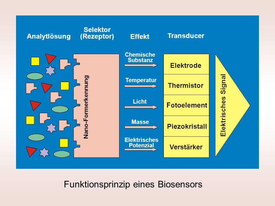 Funktionsprinzip eines Biosensors Analytlösung Selektor (Rezeptor) Effekt Transducer Elektrode Thermistor Piezokristall Verstärker Chemische Substanz