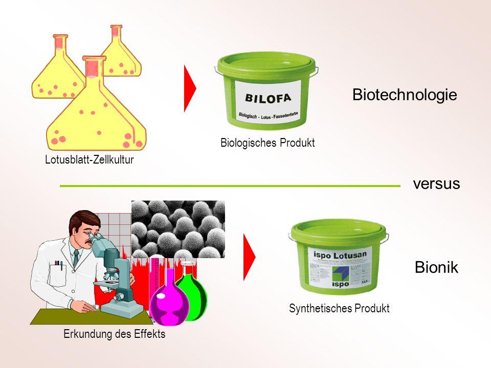 Extreme Empfindlichkeit Selektivität auf biologische Stoffe Was zeichnet den Biosensor aus .