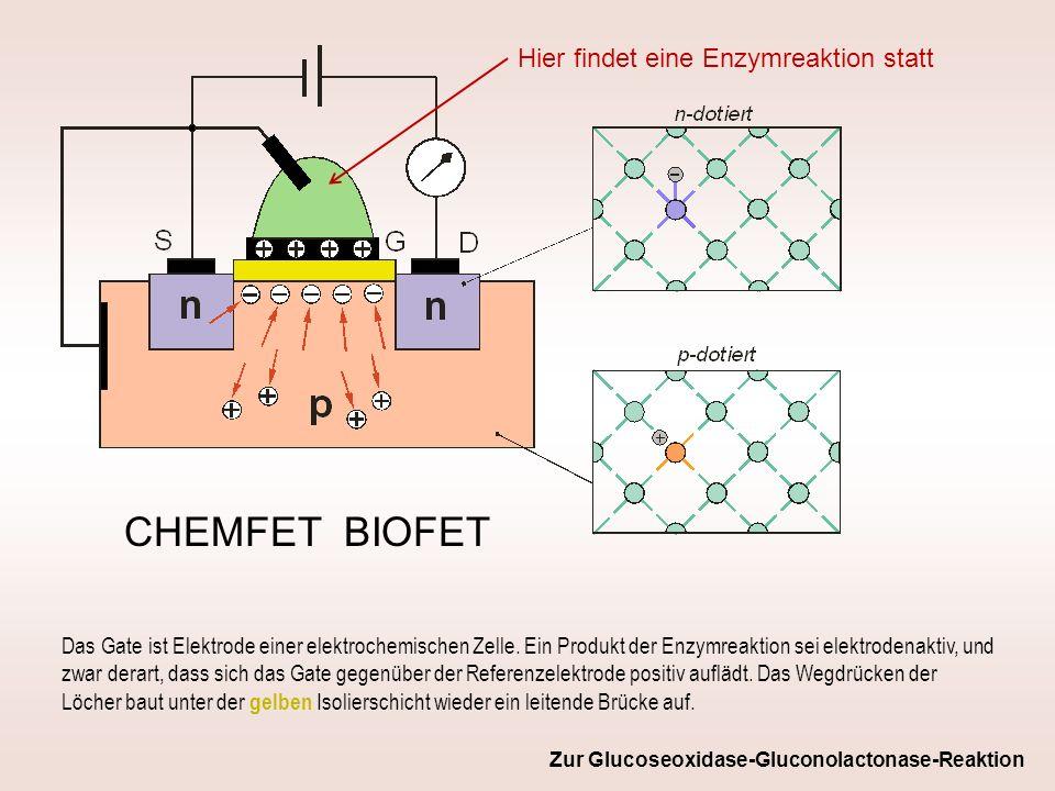 CHEMFET BIOFET Das Gate ist Elektrode einer elektrochemischen Zelle. Ein Produkt der Enzymreaktion sei elektrodenaktiv, und zwar derart, dass sich das