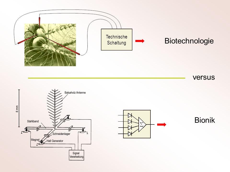 Biotechnologie Bionik versus Technische Schaltung