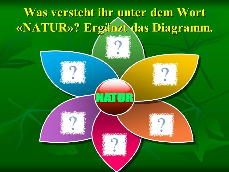 Was versteht ihr unter dem Wort «NATUR» Ergänzt das Diagramm.