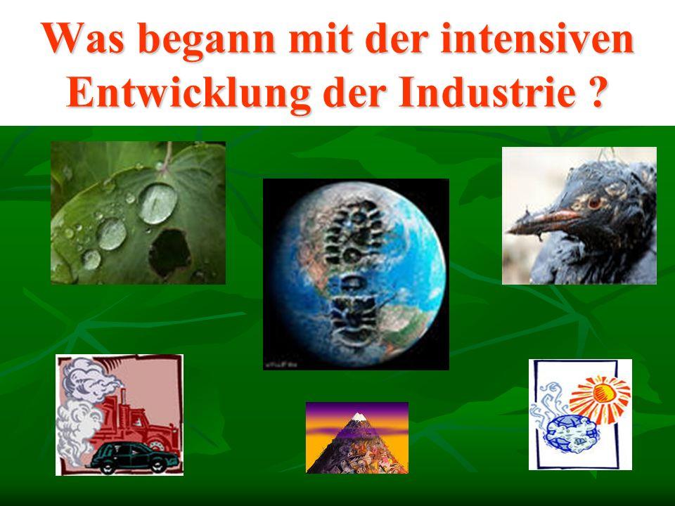 Was begann mit der intensiven Entwicklung der Industrie