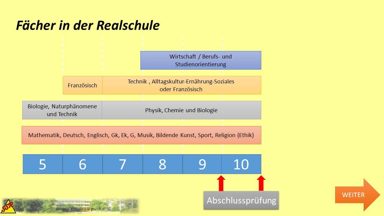 Förderung innerhalb der Realschule Klasse 5+6 Orientierungsstufe Lernen im Klassenverband Differenzierung auf verschiedenen Stufen WEITER