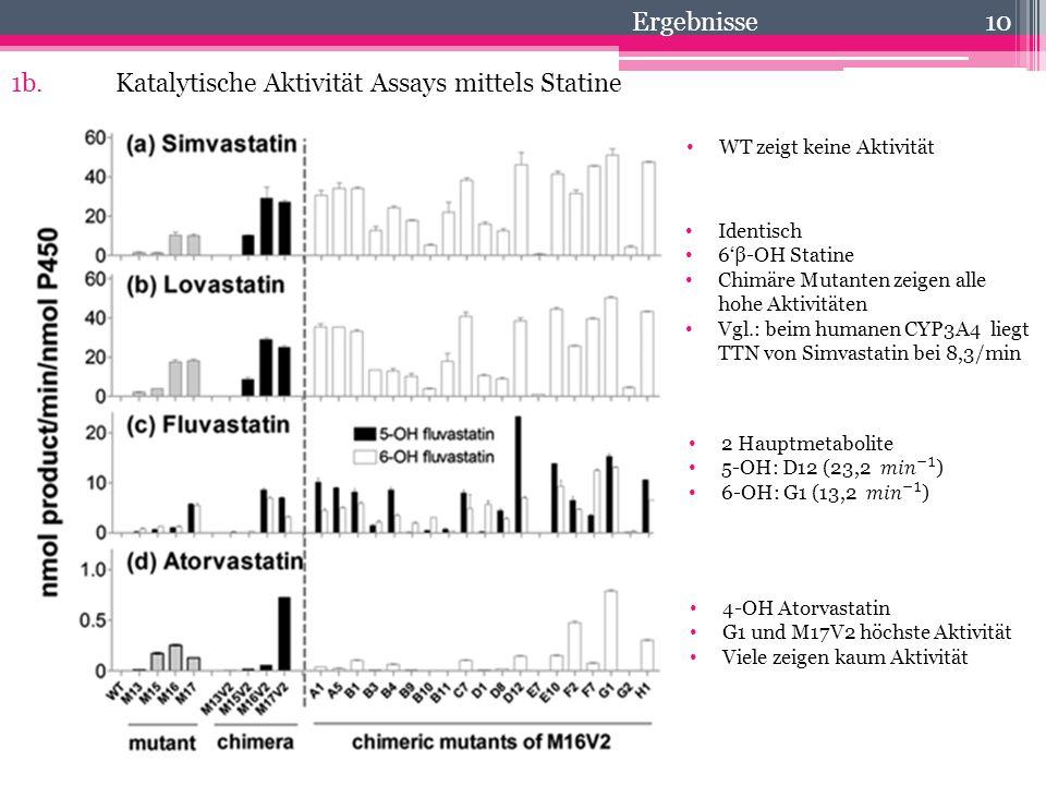 10 1b.Katalytische Aktivität Assays mittels Statine Identisch 6'β-OH Statine Chimäre Mutanten zeigen alle hohe Aktivitäten Vgl.: beim humanen CYP3A4 l