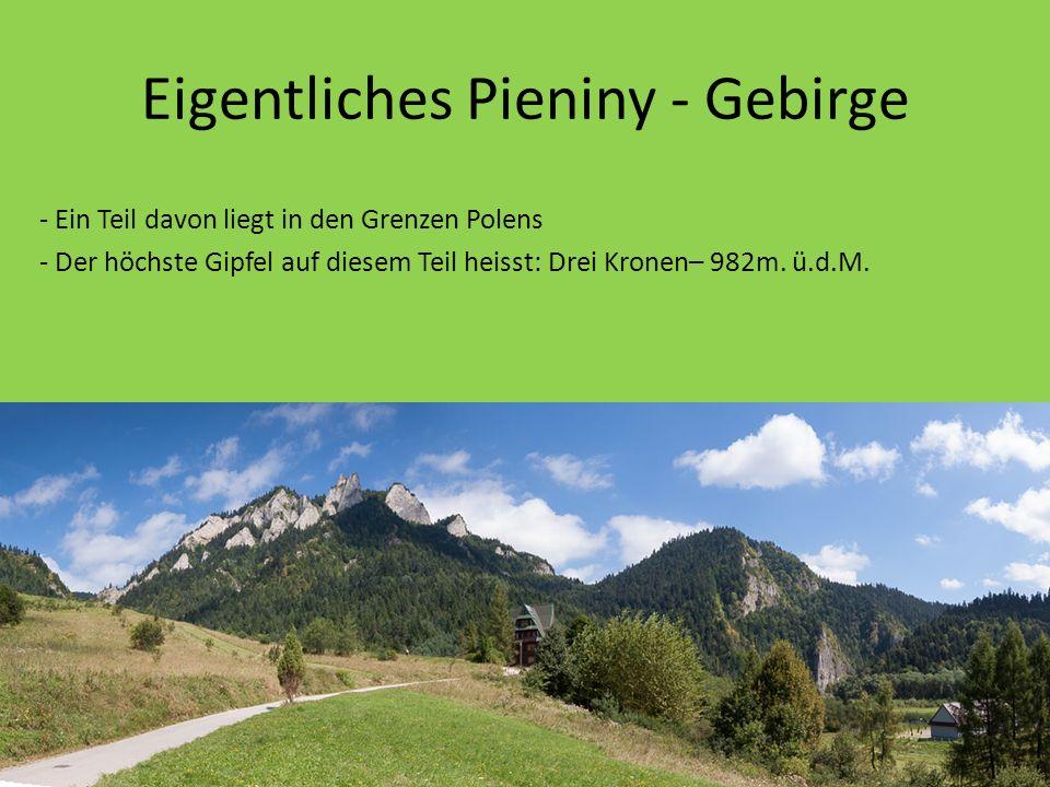 Eigentliches Pieniny - Gebirge - Ein Teil davon liegt in den Grenzen Polens - Der höchste Gipfel auf diesem Teil heisst: Drei Kronen– 982m.