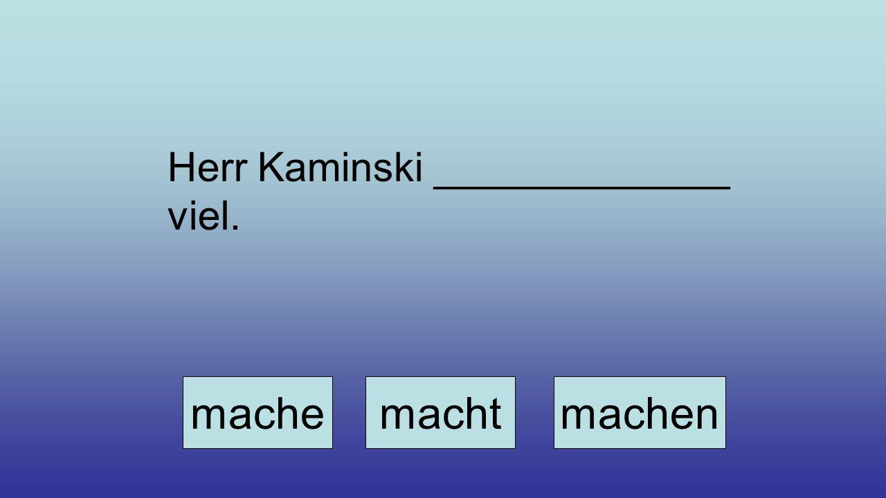 Herr Kaminski _____________ viel. machemachtmachen