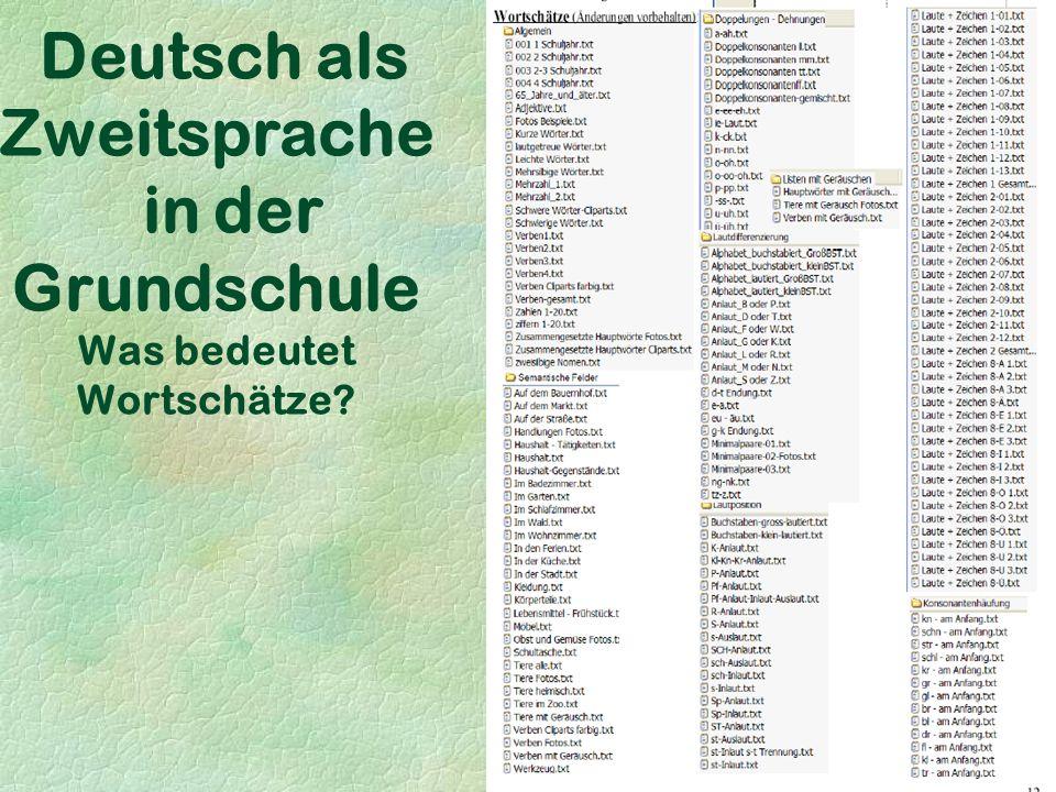 Deutsch als Zweitsprache in der Grundschule Was bedeutet Wortschätze