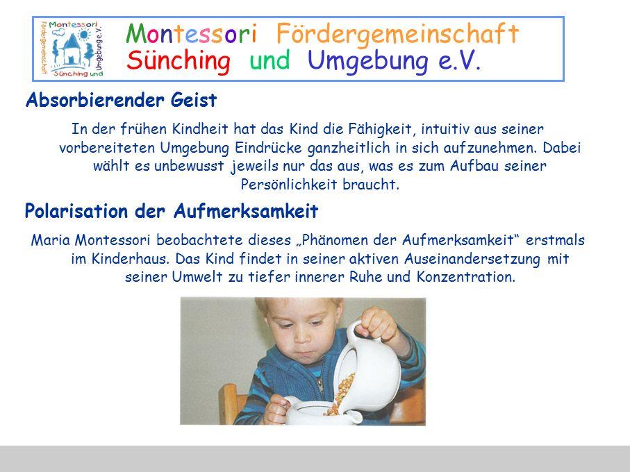 Montessori Fördergemeinschaft Sünching und Umgebung e.V. Absorbierender Geist In der frühen Kindheit hat das Kind die Fähigkeit, intuitiv aus seiner v