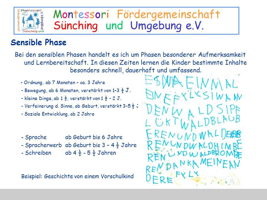 Montessori Fördergemeinschaft Sünching und Umgebung e.V. Sensible Phase Bei den sensiblen Phasen handelt es ich um Phasen besonderer Aufmerksamkeit un