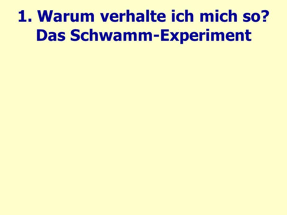 1. Warum verhalte ich mich so Das Schwamm-Experiment