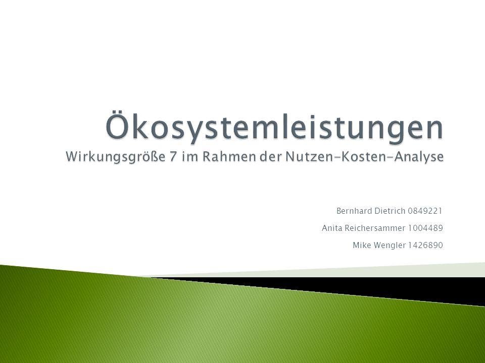 Bernhard Dietrich 0849221 Anita Reichersammer 1004489 Mike Wengler 1426890