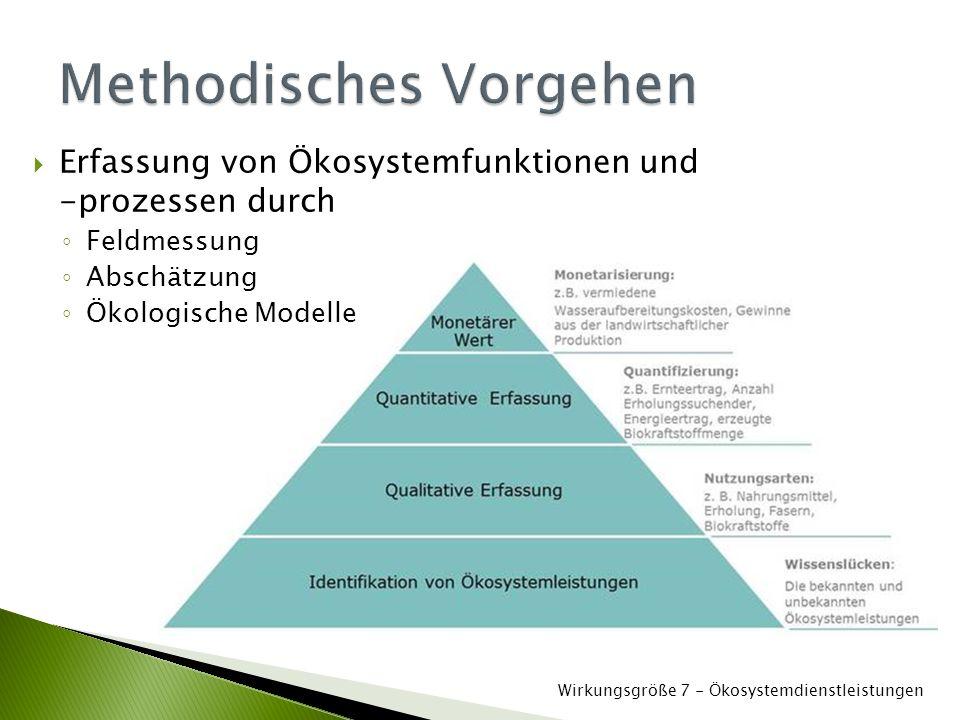  Erfassung von Ökosystemfunktionen und -prozessen durch ◦ Feldmessung ◦ Abschätzung ◦ Ökologische Modelle Wirkungsgröße 7 - Ökosystemdienstleistungen