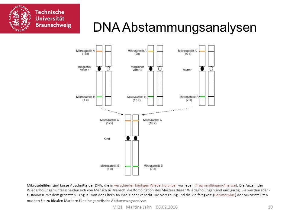 DNA Abstammungsanalysen Mi21 Martina Jahn 08.02.201610 Mikrosatelliten sind kurze Abschnitte der DNA, die in verschieden häufigen Wiederholungen vorliegen (Fragmentlängen-Analyse).