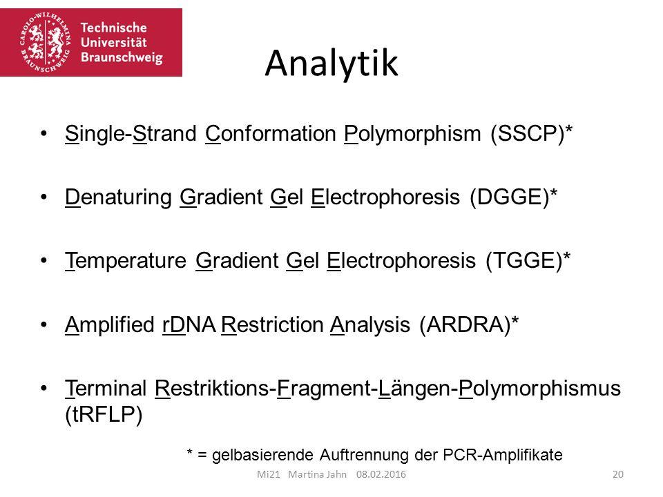 Analytik Mi21 Martina Jahn 08.02.201620 Single-Strand Conformation Polymorphism (SSCP)* Denaturing Gradient Gel Electrophoresis (DGGE)* Temperature Gradient Gel Electrophoresis (TGGE)* Amplified rDNA Restriction Analysis (ARDRA)* Terminal Restriktions-Fragment-Längen-Polymorphismus (tRFLP) * = gelbasierende Auftrennung der PCR-Amplifikate