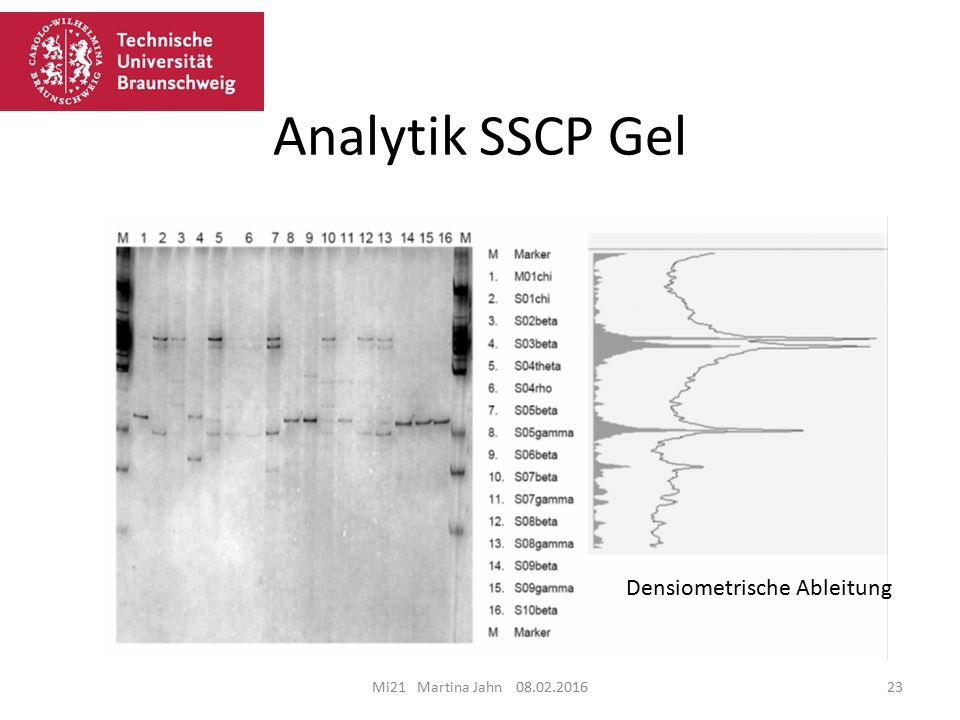 Analytik SSCP Gel Mi21 Martina Jahn 08.02.201623 Densiometrische Ableitung