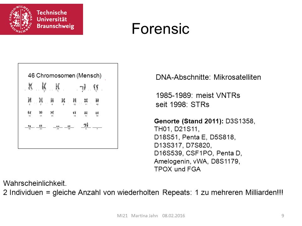 Forensic Mi21 Martina Jahn 08.02.20169 46 Chromosomen (Mensch) Genorte (Stand 2011): D3S1358, TH01, D21S11, D18S51, Penta E, D5S818, D13S317, D7S820, D16S539, CSF1PO, Penta D, Amelogenin, vWA, D8S1179, TPOX und FGA DNA-Abschnitte: Mikrosatelliten 1985-1989: meist VNTRs seit 1998: STRs Wahrscheinlichkeit.