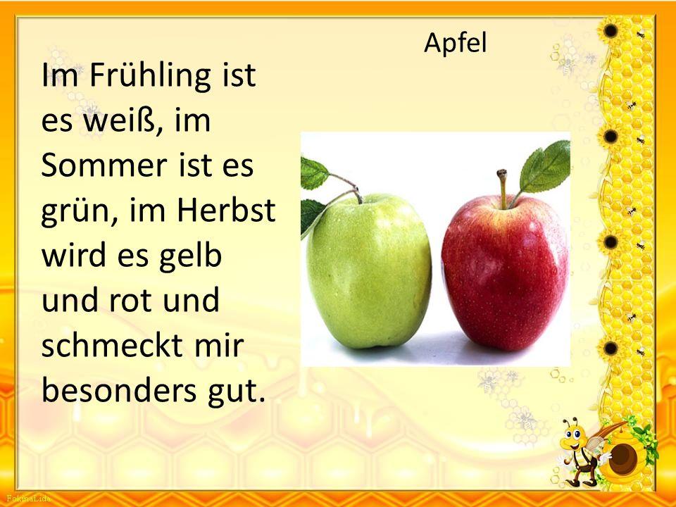 Apfel Im Frühling ist es weiß, im Sommer ist es grün, im Herbst wird es gelb und rot und schmeckt mir besonders gut.