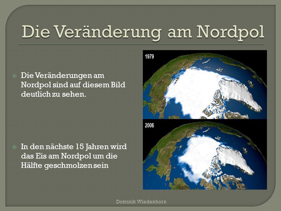  Die Veränderungen am Nordpol sind auf diesem Bild deutlich zu sehen.  In den nächste 15 Jahren wird das Eis am Nordpol um die Hälfte geschmolzen se