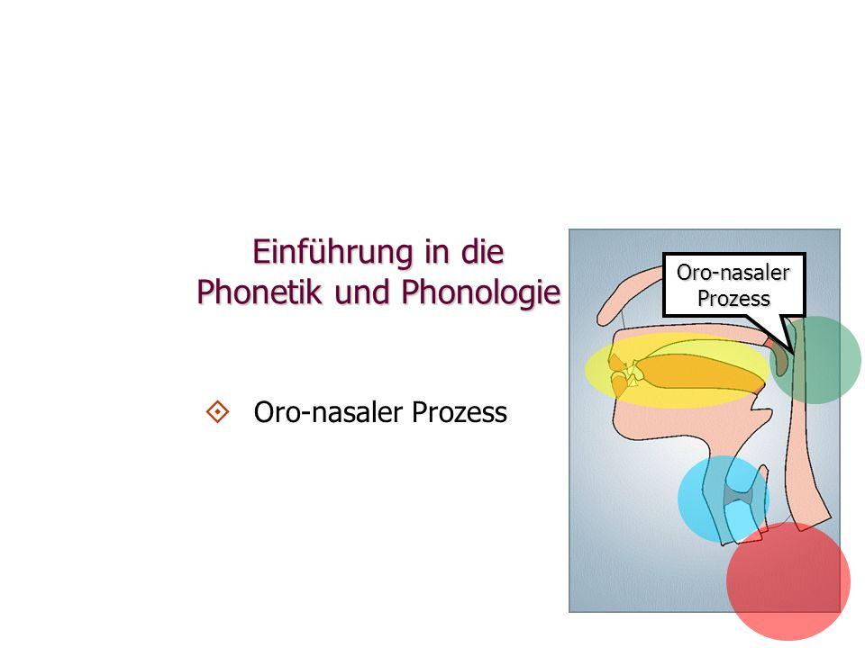 Oro-nasalerProzess Einführung in die Phonetik und Phonologie   Oro-nasaler Prozess