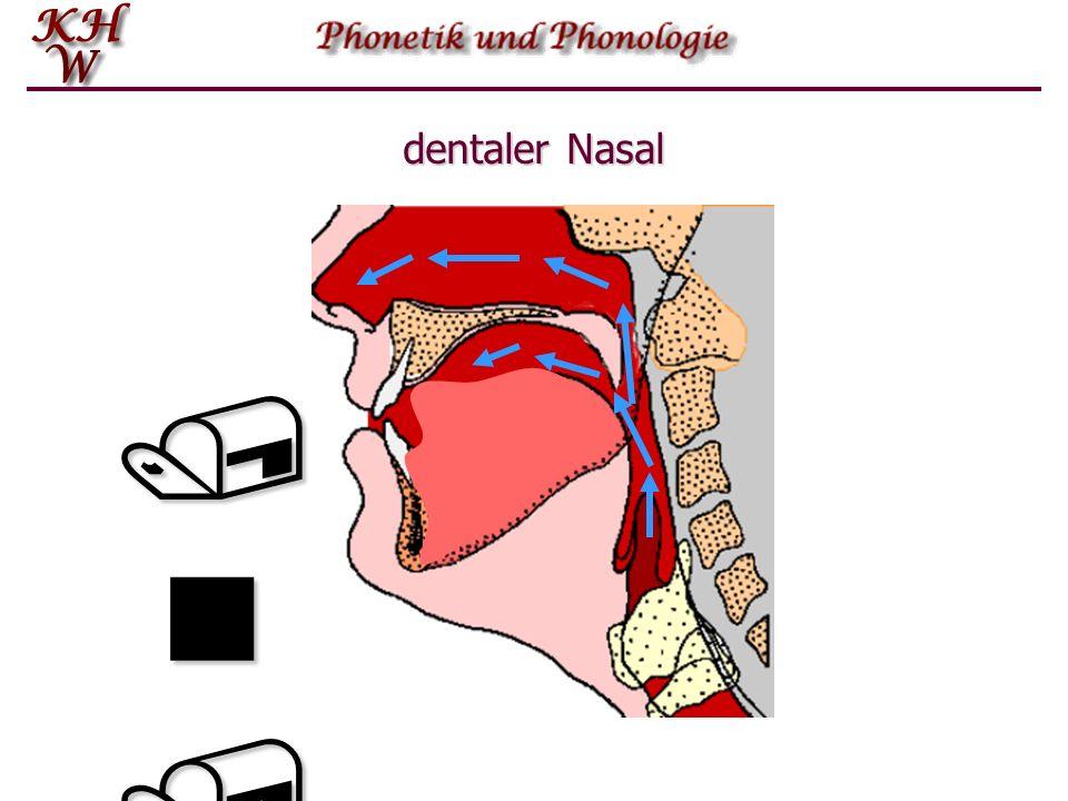 dentaler Nasal /n//n//n//n/