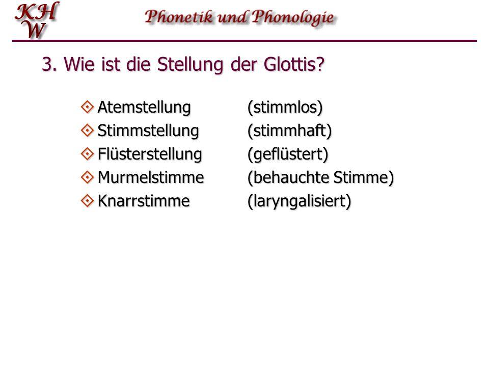 3.Wie ist die Stellung der Glottis.