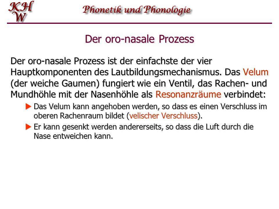Der oro-nasale Prozess Der oro-nasale Prozess ist der einfachste der vier Hauptkomponenten des Lautbildungsmechanismus.