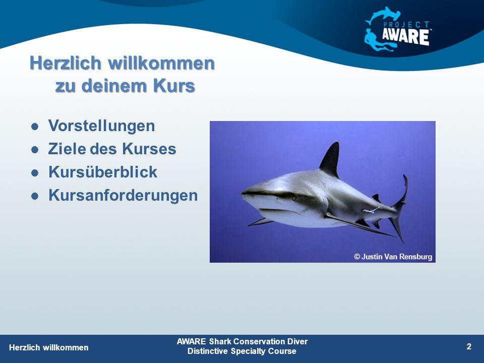 Herzlich willkommen zu deinem Kurs Vorstellungen Ziele des Kurses Kursüberblick Kursanforderungen AWARE Shark Conservation Diver Distinctive Specialty