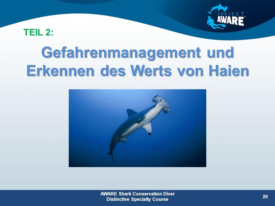 Gefahrenmanagement und Erkennen des Werts von Haien AWARE Shark Conservation Diver Distinctive Specialty Course 20 TEIL 2: