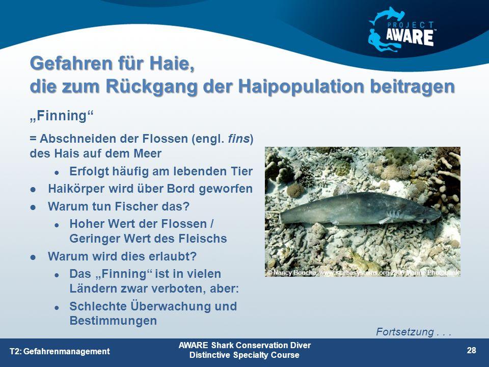 = Abschneiden der Flossen (engl. fins) des Hais auf dem Meer Erfolgt häufig am lebenden Tier Haikörper wird über Bord geworfen Warum tun Fischer das?