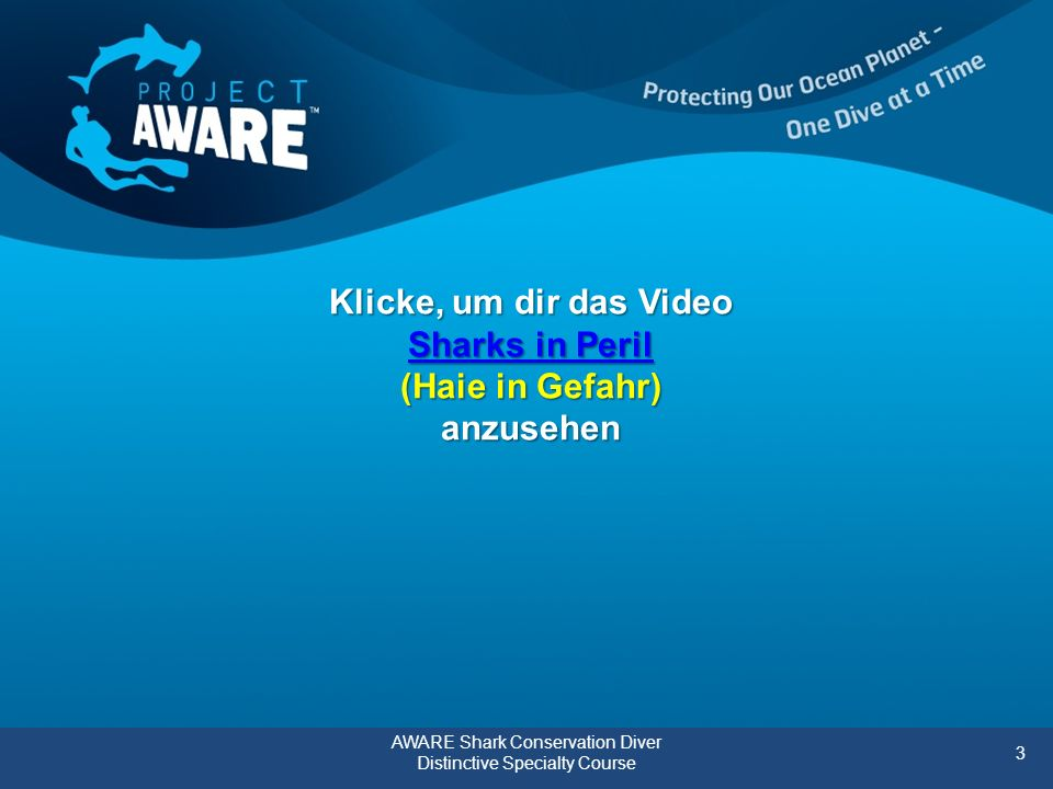 Klicke, um dir das Video Sharks in Peril (Haie in Gefahr) anzusehen Sharks in Peril Sharks in Peril AWARE Shark Conservation Diver Distinctive Specialty Course 3