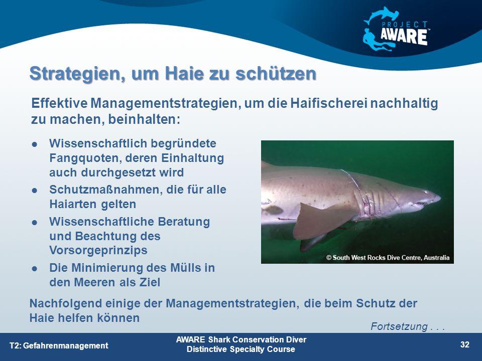 Strategien, um Haie zu schützen Wissenschaftlich begründete Fangquoten, deren Einhaltung auch durchgesetzt wird Schutzmaßnahmen, die für alle Haiarten