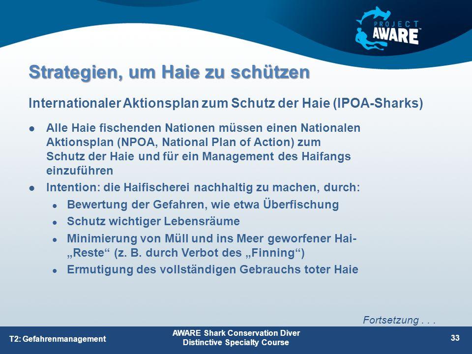 Alle Haie fischenden Nationen müssen einen Nationalen Aktionsplan (NPOA, National Plan of Action) zum Schutz der Haie und für ein Management des Haifa