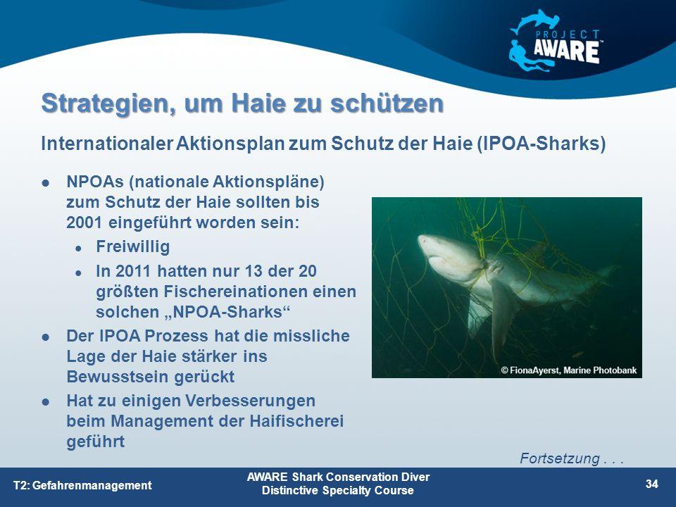 NPOAs (nationale Aktionspläne) zum Schutz der Haie sollten bis 2001 eingeführt worden sein: Freiwillig In 2011 hatten nur 13 der 20 größten Fischerein