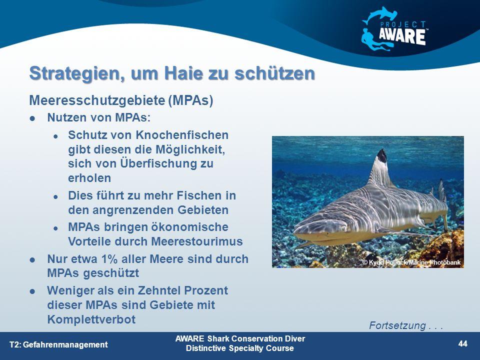 Nutzen von MPAs: Schutz von Knochenfischen gibt diesen die Möglichkeit, sich von Überfischung zu erholen Dies führt zu mehr Fischen in den angrenzende