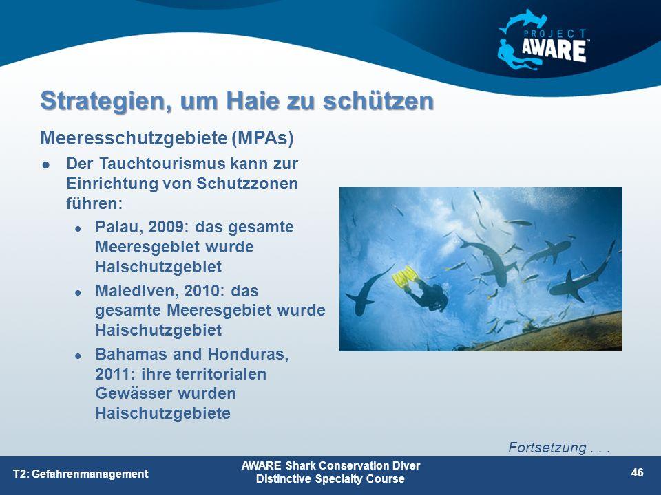 Der Tauchtourismus kann zur Einrichtung von Schutzzonen führen: Palau, 2009: das gesamte Meeresgebiet wurde Haischutzgebiet Malediven, 2010: das gesam