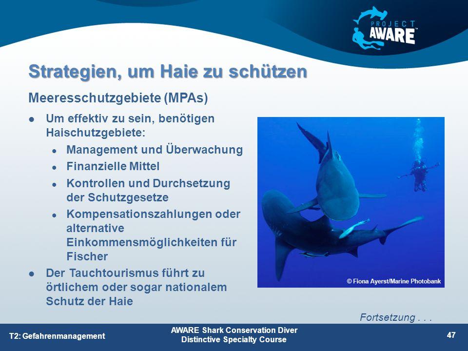 Um effektiv zu sein, benötigen Haischutzgebiete: Management und Überwachung Finanzielle Mittel Kontrollen und Durchsetzung der Schutzgesetze Kompensat