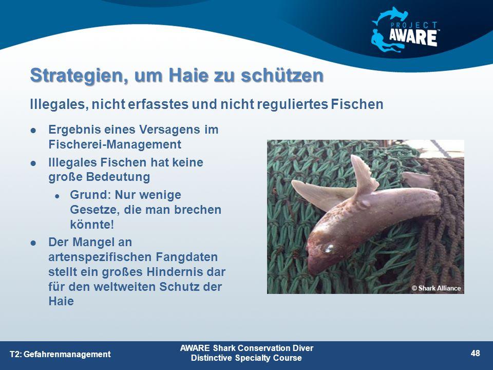 Ergebnis eines Versagens im Fischerei-Management Illegales Fischen hat keine große Bedeutung Grund: Nur wenige Gesetze, die man brechen könnte! Der Ma