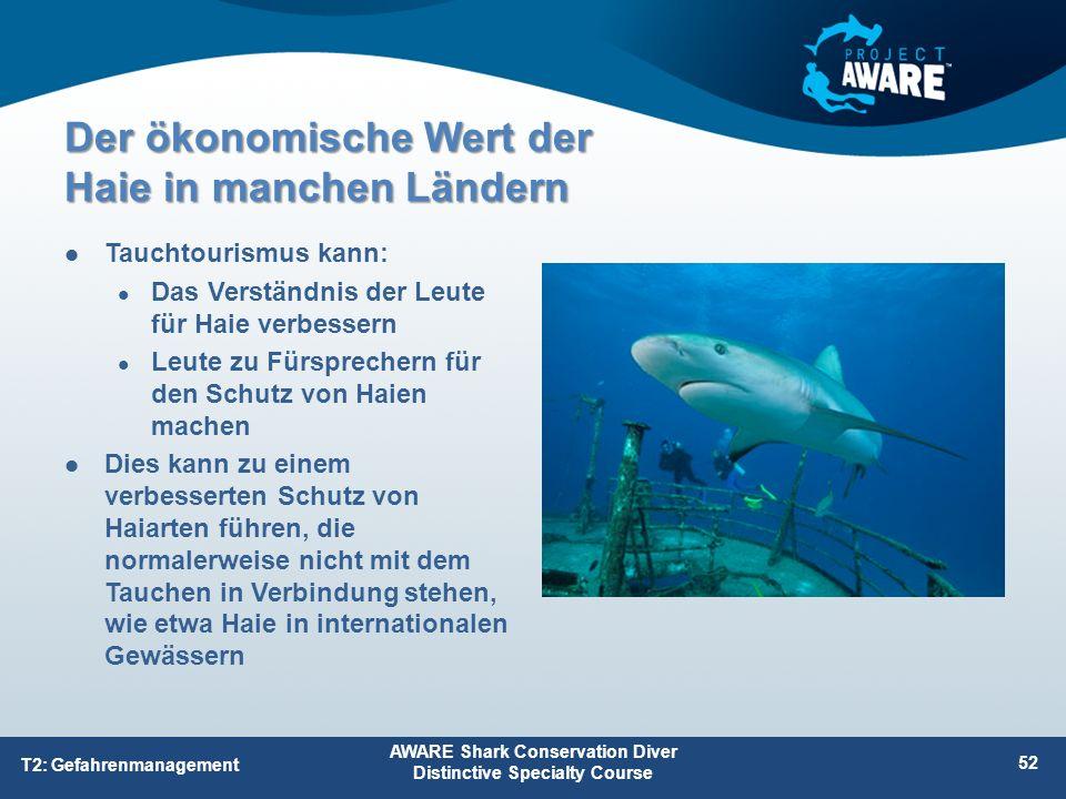 Tauchtourismus kann: Das Verständnis der Leute für Haie verbessern Leute zu Fürsprechern für den Schutz von Haien machen Dies kann zu einem verbessert
