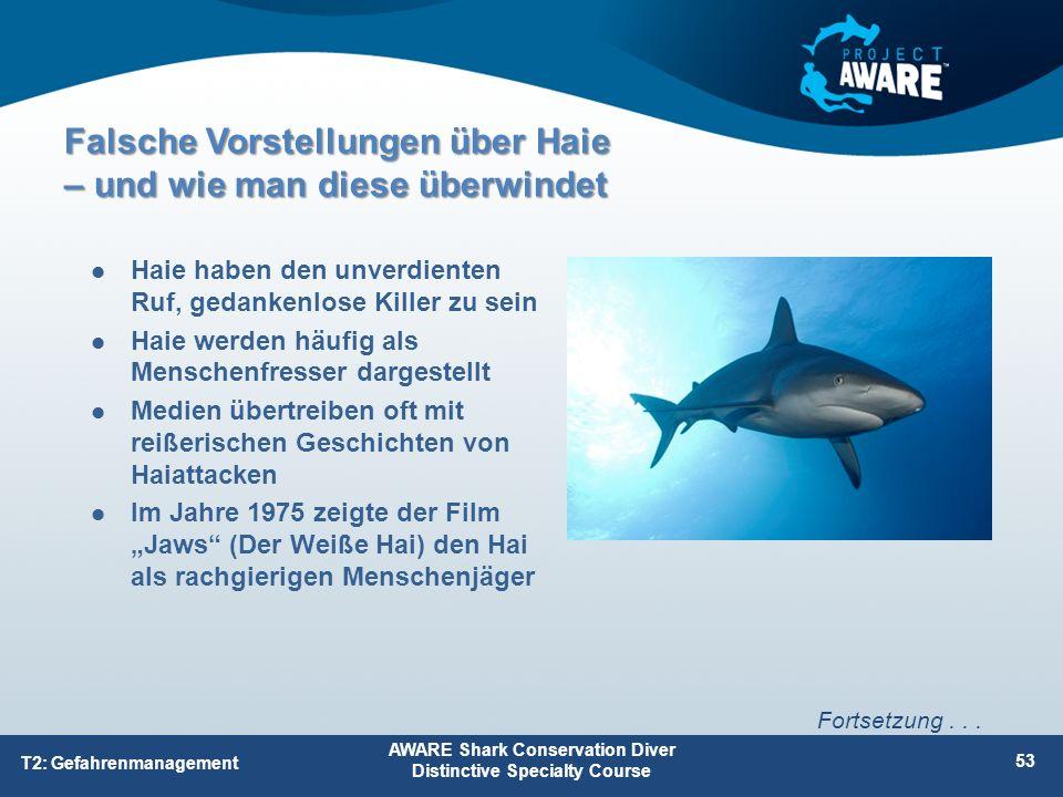 Falsche Vorstellungen über Haie – und wie man diese überwindet Haie haben den unverdienten Ruf, gedankenlose Killer zu sein Haie werden häufig als Men