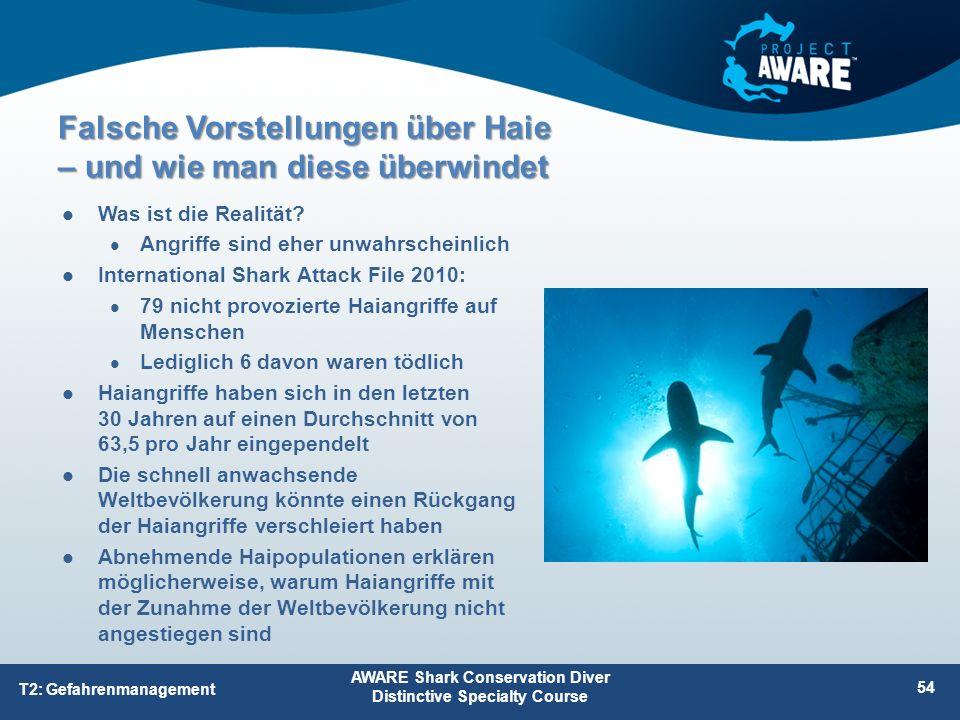 Was ist die Realität? Angriffe sind eher unwahrscheinlich International Shark Attack File 2010: 79 nicht provozierte Haiangriffe auf Menschen Lediglic
