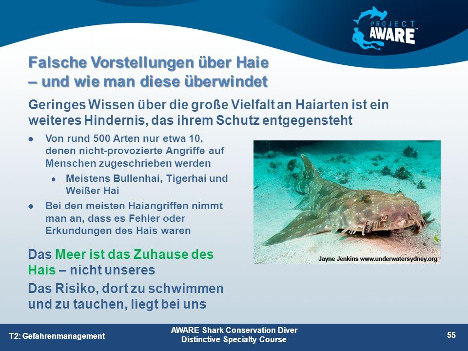 Von rund 500 Arten nur etwa 10, denen nicht-provozierte Angriffe auf Menschen zugeschrieben werden Meistens Bullenhai, Tigerhai und Weißer Hai Bei den