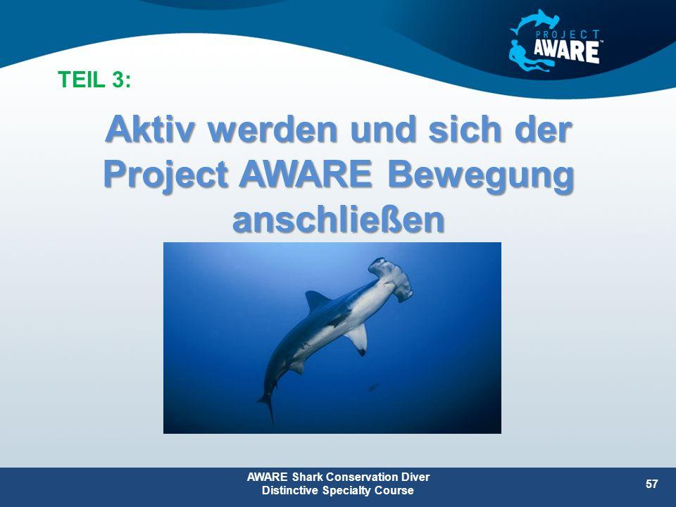 Aktiv werden und sich der Project AWARE Bewegung anschließen AWARE Shark Conservation Diver Distinctive Specialty Course 57 TEIL 3: