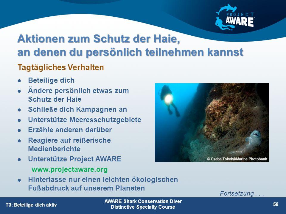 Aktionen zum Schutz der Haie, an denen du persönlich teilnehmen kannst Beteilige dich Ändere persönlich etwas zum Schutz der Haie Schließe dich Kampag